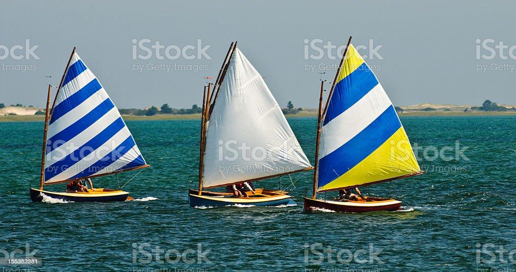 Sailboat Race royalty-free stock photo