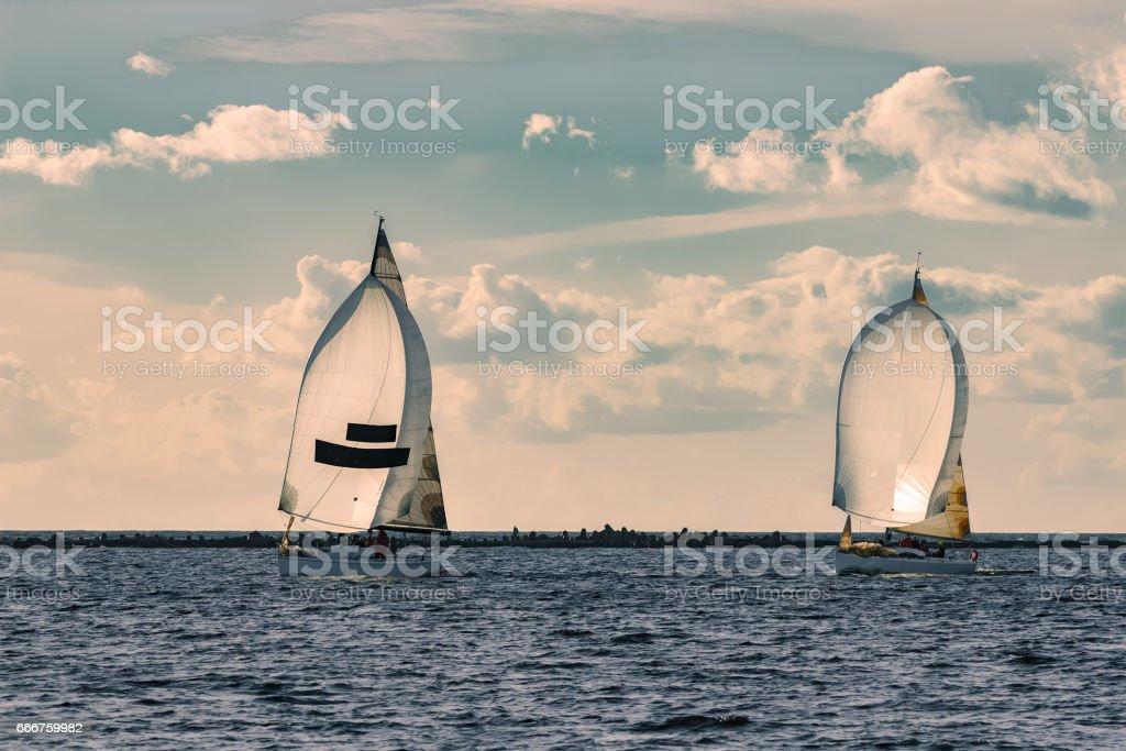 Sailboat regatta on Daugava river foto stock royalty-free