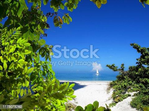 beautiful sailboat sailing on sea over sunny blue sky in Florida, USA