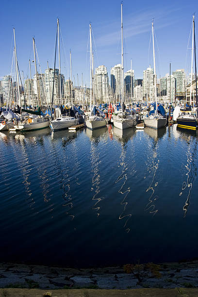 Sailboats in a vancouver marina with mast reflections stock photo