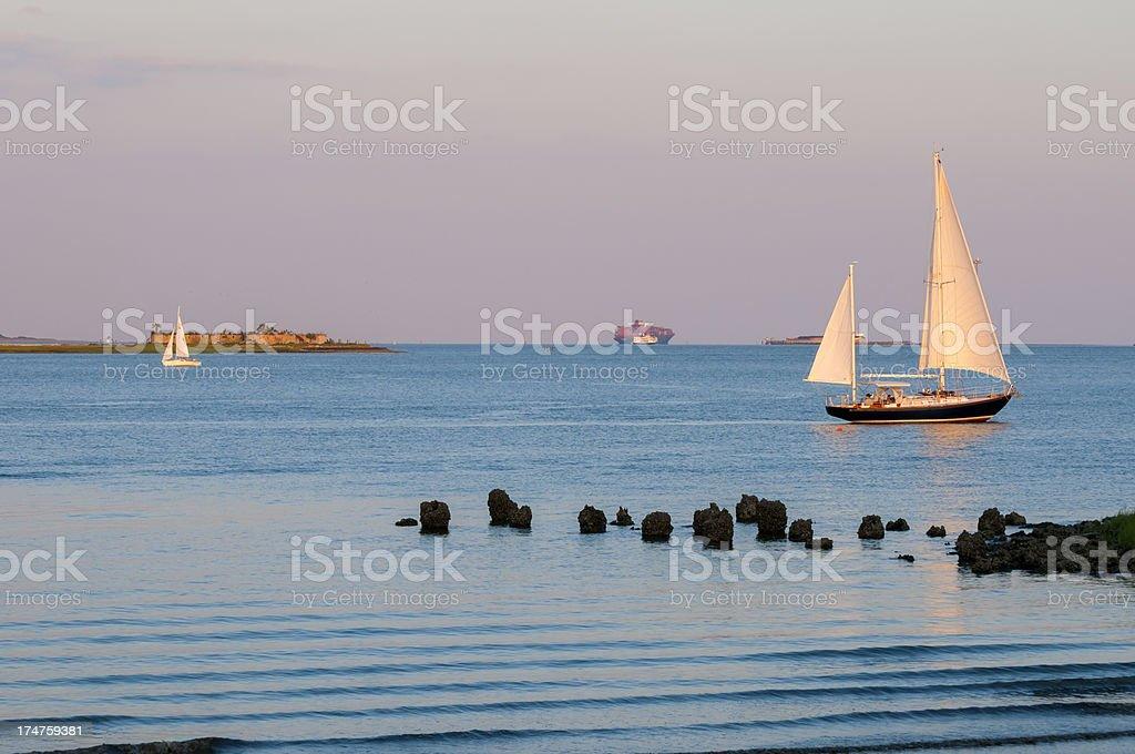 Sailboats in Charleston harbor stock photo