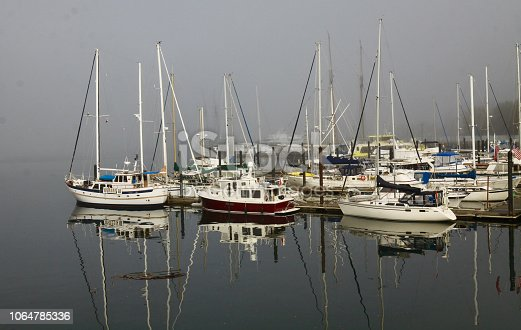 Sailboats sitting in the morning mist in Victoria Canada harbor