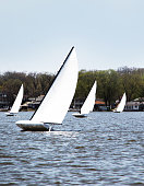 Dinghies with one sail on lake, heel in the wind.