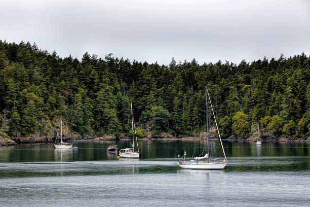 Sailboats moored near Firday harbor. stock photo