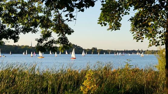 sailboats on alster lake