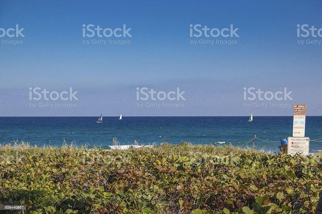 sailboats on ocean under deep blue sky stock photo