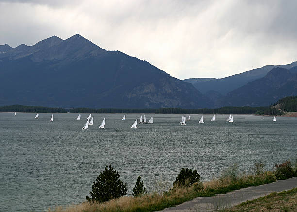 Sailboats race to shore!  bunnylady stock pictures, royalty-free photos & images