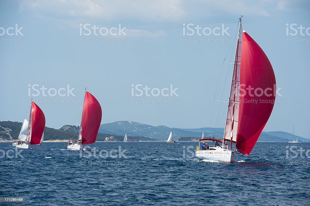 Sailboats with red genackers compeeting during regatta stock photo