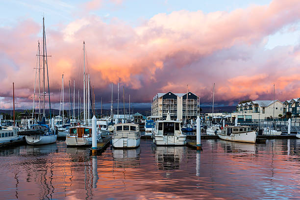 sailing at dusk - tasmania stock pictures, royalty-free photos & images