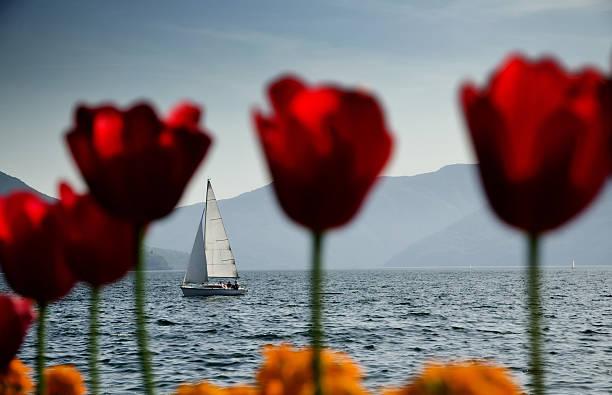 Sailing boat on an alpine lake stock photo