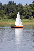 small sailing boat and forrest