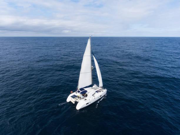 segling katamaran i atlanten - katamaran bildbanksfoton och bilder