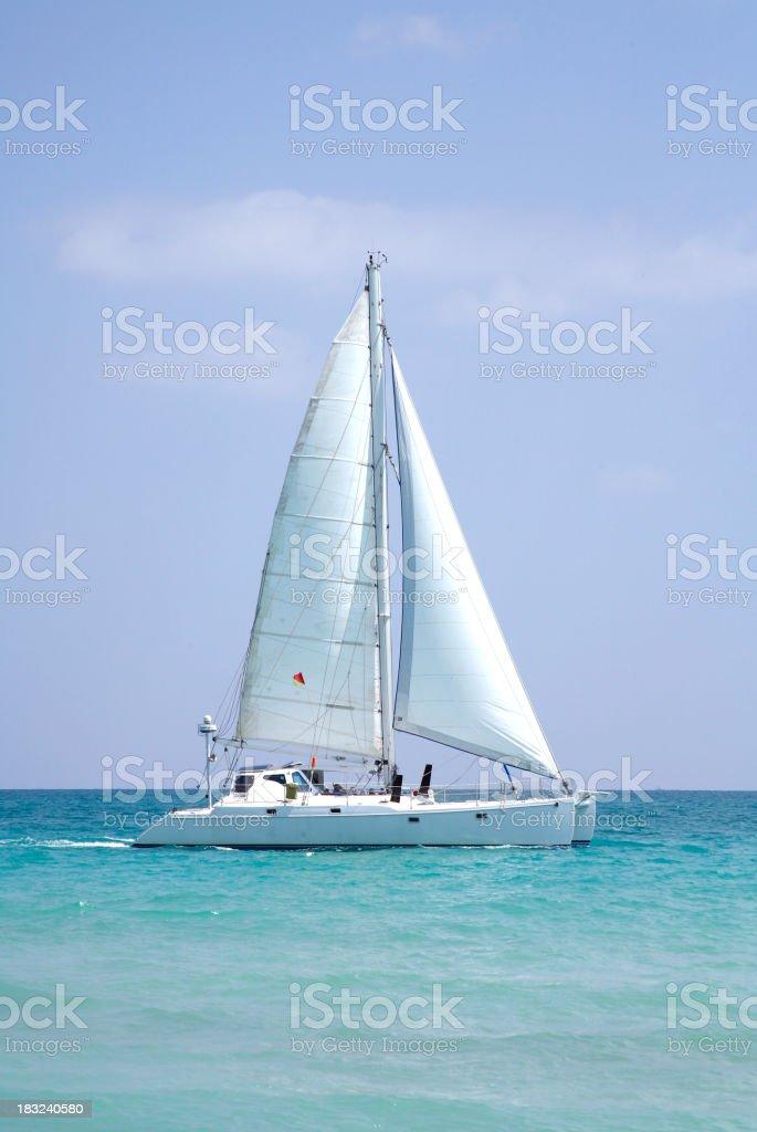Sailing catamaran royalty-free stock photo