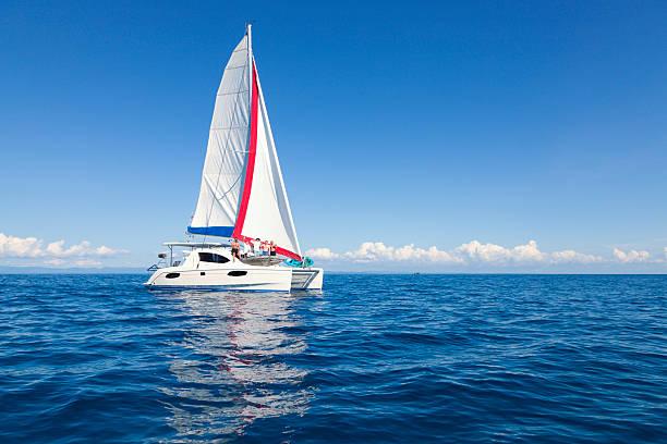 sailing crew - katamaran bildbanksfoton och bilder
