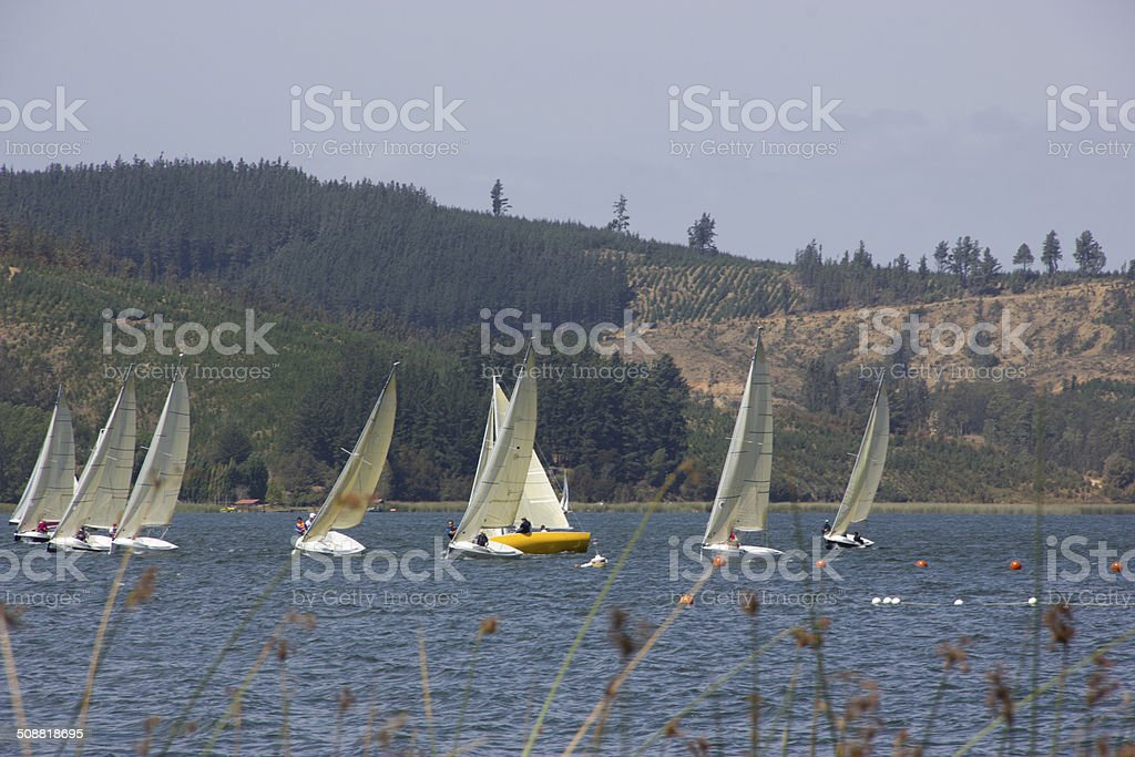 sailing dinghy, lake life in vichuquen chile stock photo