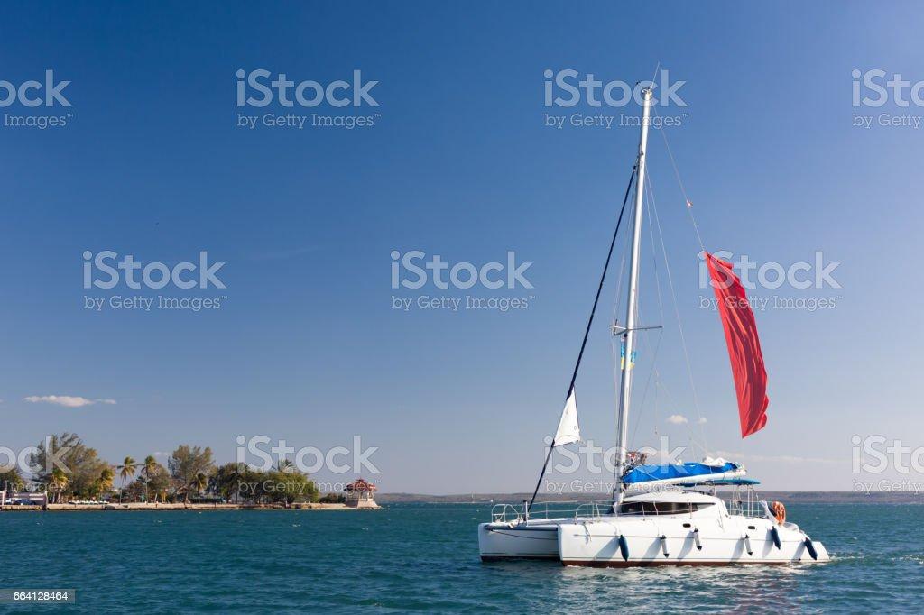 Sailing in Carribean foto stock royalty-free