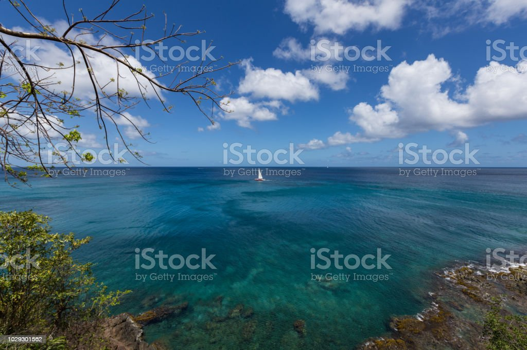 Sailing in St Lucia stock photo