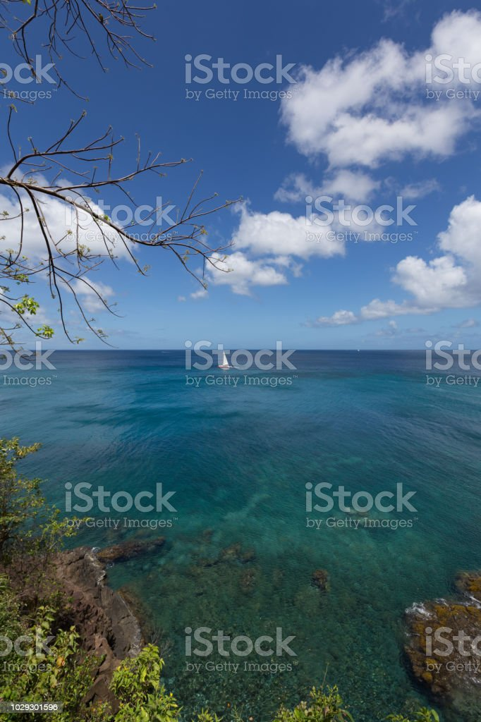 Sailing in St Lucia - Vertical stock photo