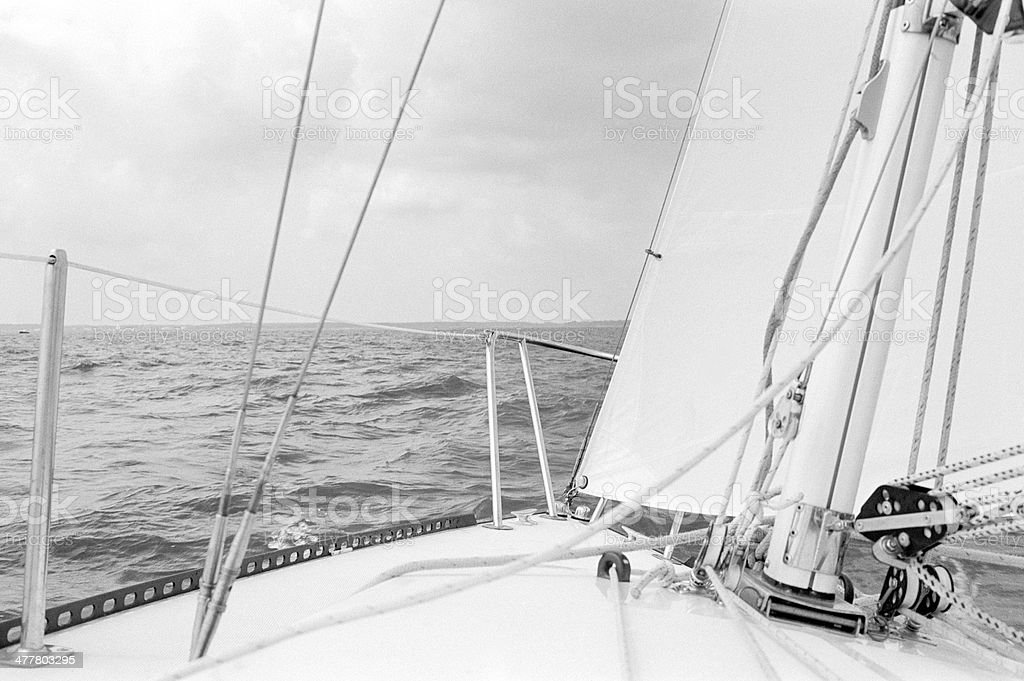 Sailing in the Bay royalty-free stock photo