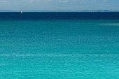 Enjoying nature, sailing in this sea of blue immensity in Salvador, Bahia - Brazil