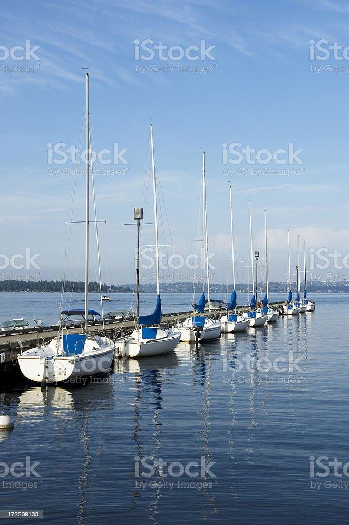Sailing Line Up royalty-free stock photo