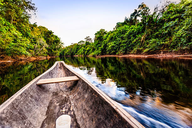 Sailing on Indigenous wooden canoe in the Amazon state Venezuela Sailing on Indigenous wooden canoe on a river in the Amazon state Venezuela amazon river stock pictures, royalty-free photos & images