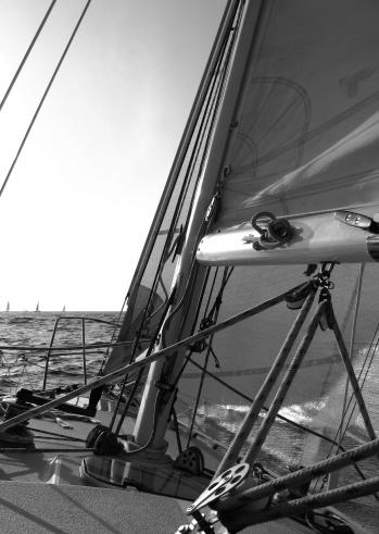501889762 istock photo Sailing 147273642