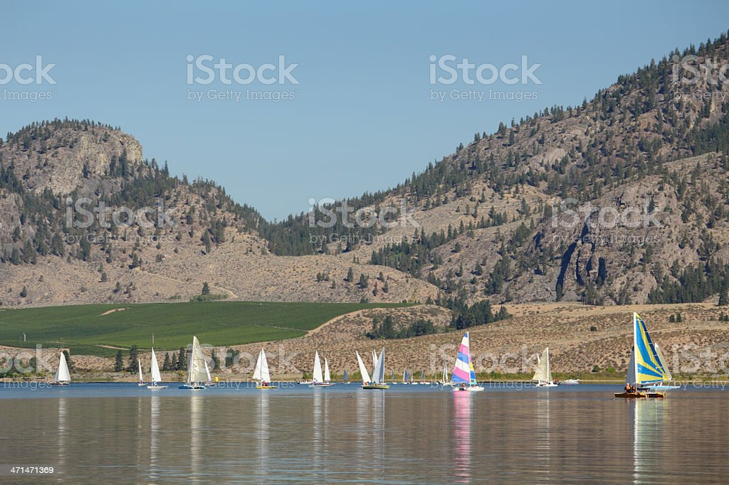 Sailing Regatta, Osoyoos Lake BC stock photo