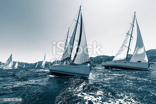 Sailing regatta through the waves in the Sea. In cool colors.
