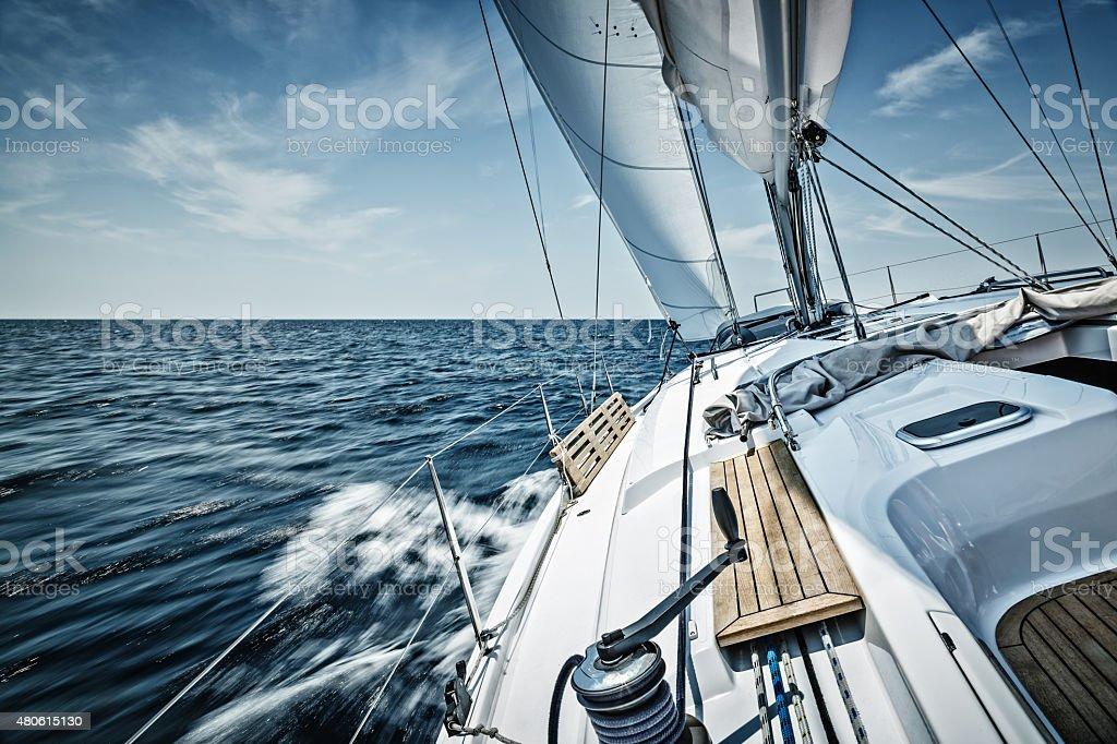 Sailing with sailboat bildbanksfoto