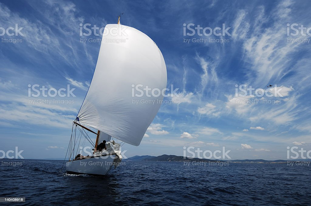 sailing with white spinnaker stock photo