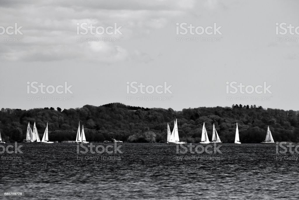 Sails on lake zbiór zdjęć royalty-free