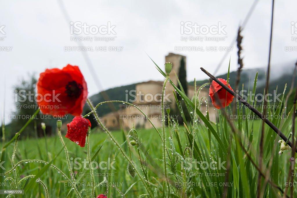 Saint Antimo stock photo