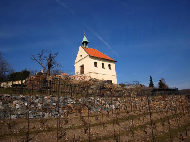 saint clara church with vineyard - jesus and heart zdjęcia i obrazy z banku zdjęć