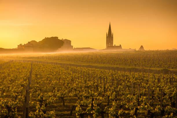 saint emilion sunrise, bordeaux, frankreich - bordeaux wein stock-fotos und bilder