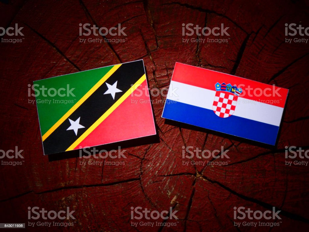Saint Kitts and Nevis flag with Croatian flag on a tree stump isolated stock photo