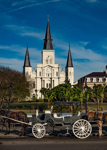 Kathedrale Saint-Louis in New Orleans French Quarter – Foto