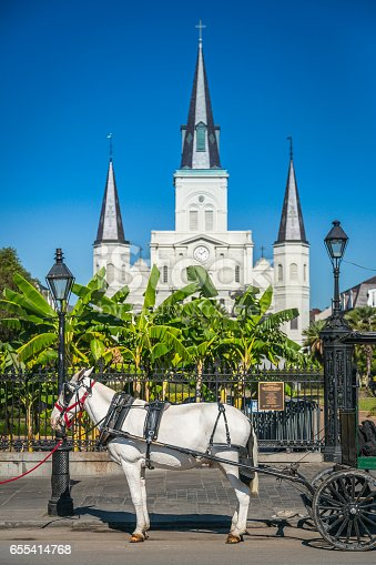 564604962 istock photo Saint Louis Cathedral in New Orleans 655414768