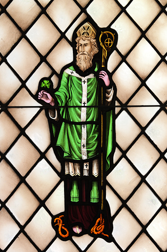 Saint Patrick Ireland Apostle Priest