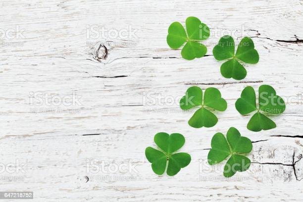 Saint patricks day background with green shamrock flat lay picture id647218752?b=1&k=6&m=647218752&s=612x612&h=qykhc429xlssqjfye u9qvg35utcmibr4b6oymrbgy0=