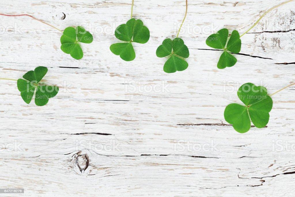 St. Patricks Day Kleeblatt oder Klee auf weißem Hintergrund aus Holz. – Foto