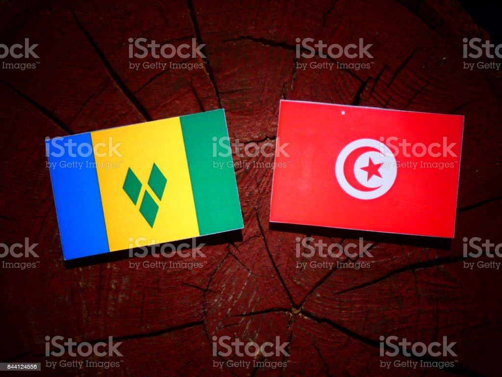 Bandeira de São Vicente e Granadinas com bandeira da Tunísia no tronco de uma árvore isolada - foto de acervo