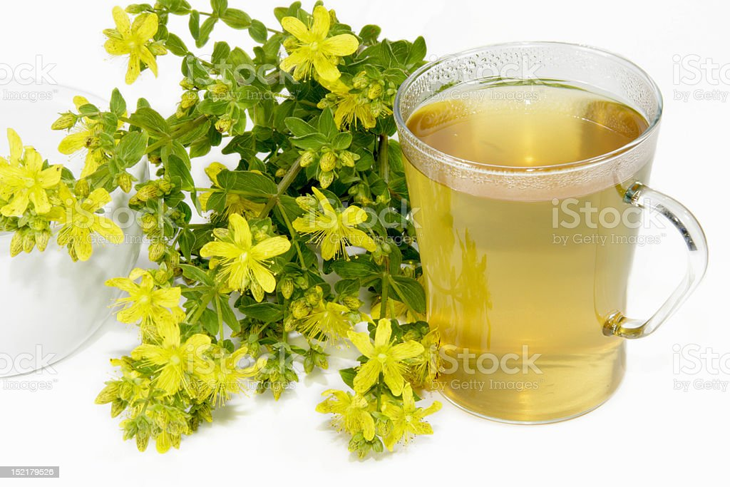 Saint-Johns wort tea royalty-free stock photo