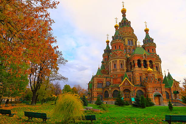 saints. peter and paul cathedral in peterhof city, russia - peter and paul cathedral bildbanksfoton och bilder