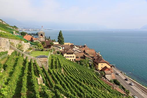 Saint-Saphorin on the shores of Lake Geneva