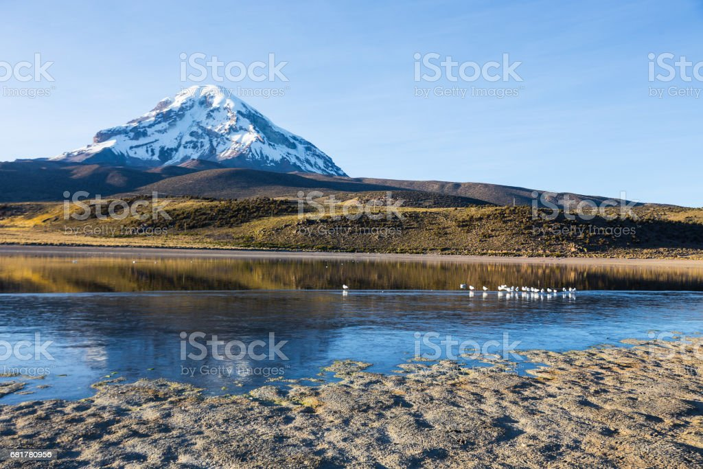 Sajama volcano and lake Huayñacota. Andean Bolivia stock photo