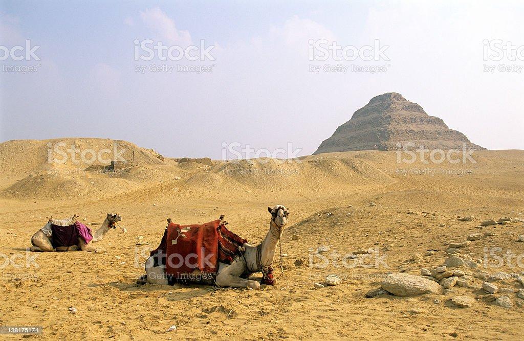 Sakkarah and Zoser's Step Pyramid stock photo