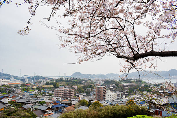 Sakura und Shimonoseki – Foto