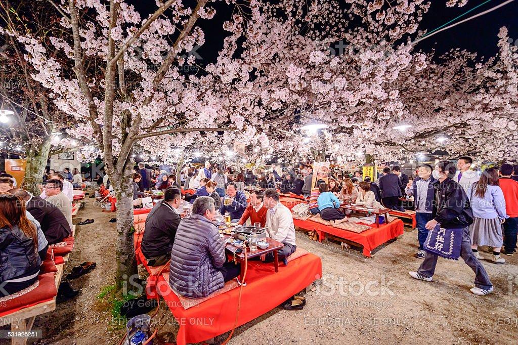 Sakura Festival in Japan stock photo