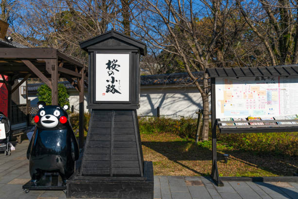 23 Kumamon Stock Photos, Pictures & Royalty-Free Images - iStock